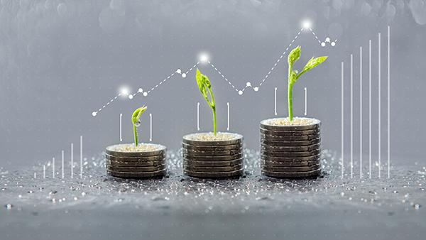 Comment retirer les cotisations et les revenus de son REEE?